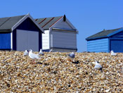 Calshot Beach, New forest, Hampshire